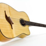 Stoll IQ Bass fanned frets Multiscale Acoustic Bass