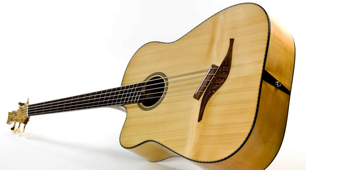 left-handed acoustic bass 5 string with Fanned Frets