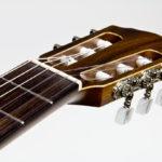 Stoll Primera Classical Guitar - Head