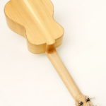 Tenor Ukulele Black Locust Spruce local wood non tropical