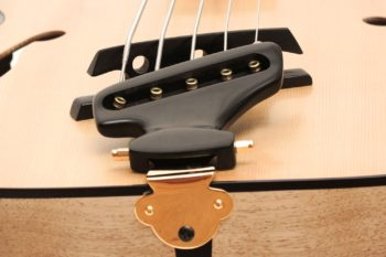 archtip acoustic bass bevel fanned frets side soundhole