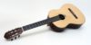Classical Baritone Guitar, Scale 665 mm