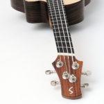 acoustic bass ukulele fanned frets multi scale side sound port pickup