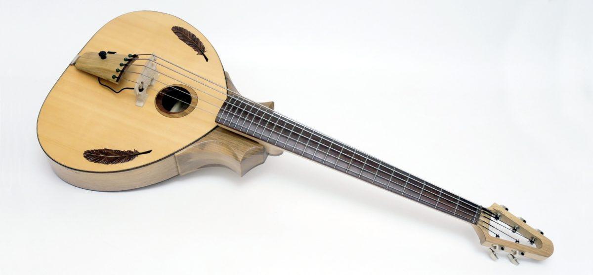 5-string bowable bass custom
