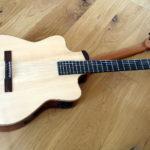 Double Neck Reversible Guitar