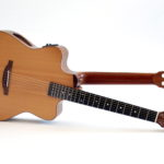 double neck reversible acoustic guitar steelstring classical luthier