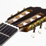 Classical Guitar Evolution M - head