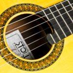 Classical Guitar Evolution M - Rosette