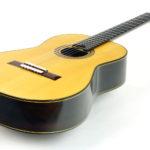 Classical Guitar Evolution M