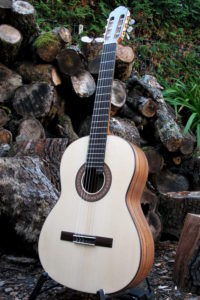 Classical Guitar Classic Line I - Indian Walnut