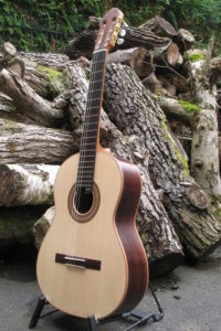 Classical Guitar Classic Line I - Indian Rosewood