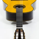 Classical soloist Guitar Evolution M