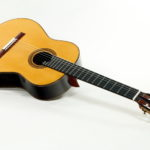 Classical soloist Guitar Evolution M