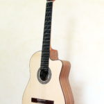 Nylon String Guitar Cutaway Modern Styles Indian Walnut