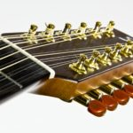 Stoll Ambition 12 Steelstring Guitar