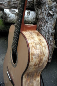 Steel String Guitar Spalted Mango - Upper Bout