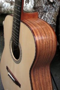 Steel String Guitar Ambition Indian Walnut - Upper Bout
