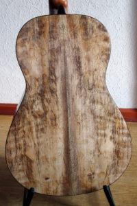 Steelstring Guitar Ambition Parlor Mango - Back