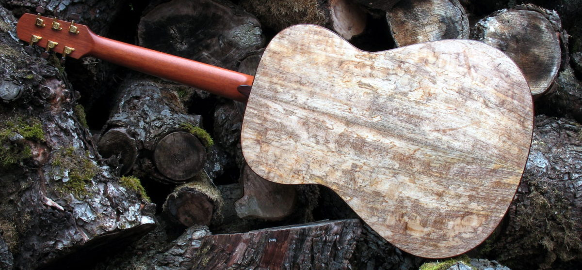 Steel String Guitar Spalted Mango - Back