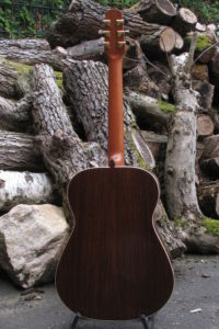 Steel String Guitar Indian Rosewood - Back