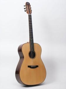 Steelstring Guitar S-Custom - Brazilian Rosewood