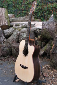 Steel String Guitar Ambition Fingerstyle with Cutaway, Fretboard Inlays and Bindings made of Pear