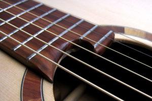 Fingerstyle steel string guitar Local Woods: Cherry Spruce Plum