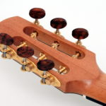 steel string fingerstyle guitar cutaway