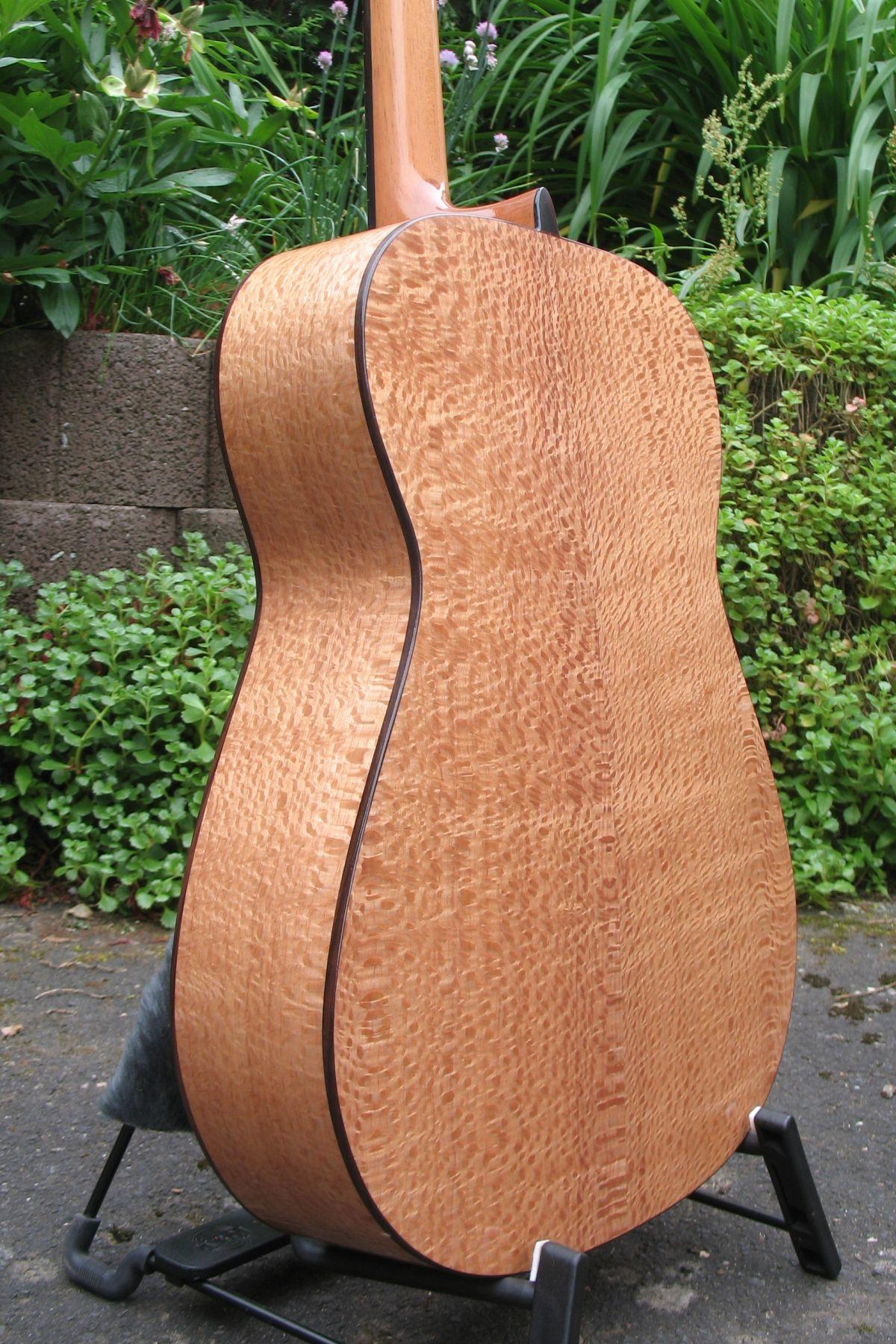 Stoll Steelstring Guitar Ambition Silver Oak Custom - back