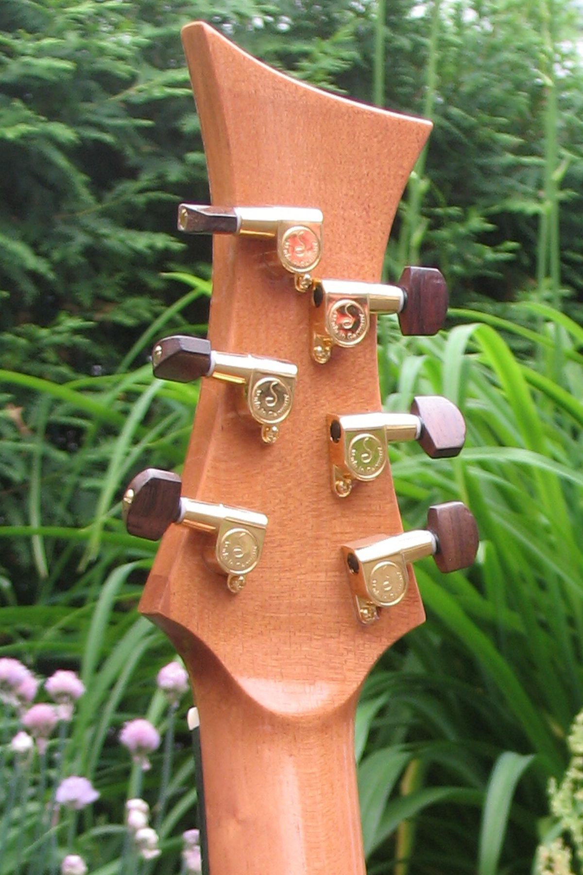 Stoll Steelstring Guitar Ambition Silver Oak Custom - head