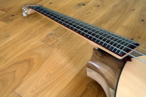 Bowable fretted 5-string Acoustic Bass neck