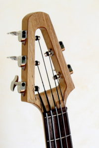 Bowable fretted 5-string Acoustic Bass head