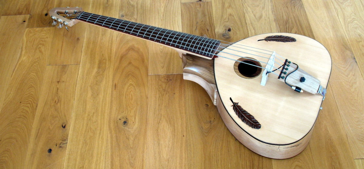 Bowable fretted 5-string Acoustic Bass