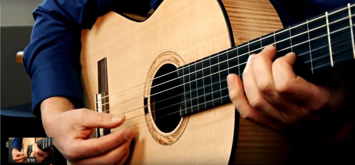 Semi Fretless Nylon String Guitar Primera Custom